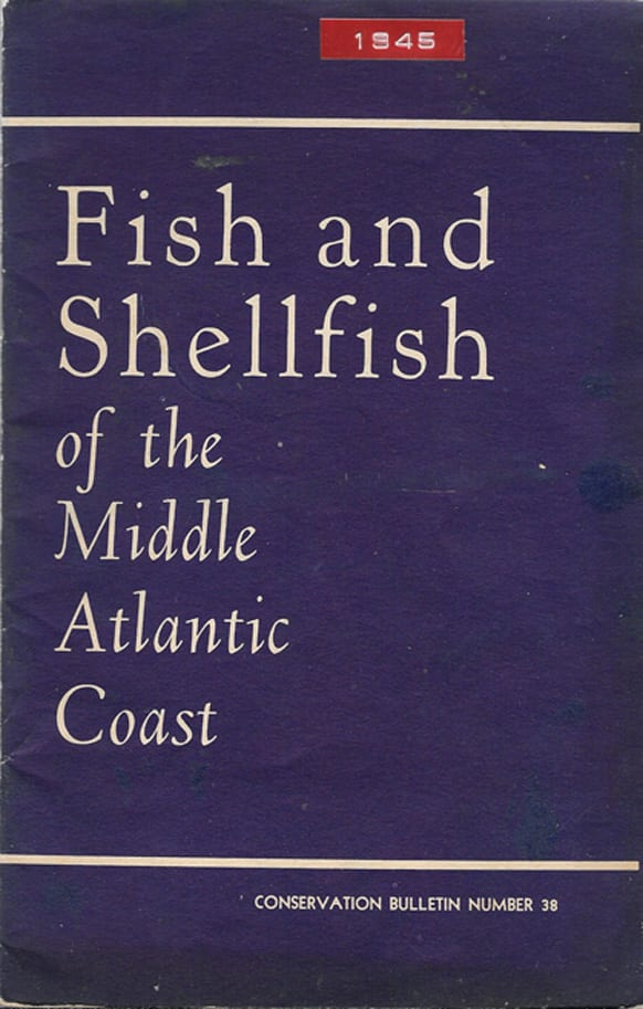 Fish and Shellfish of the Middle Atlantic Coasts, Rachel Carson